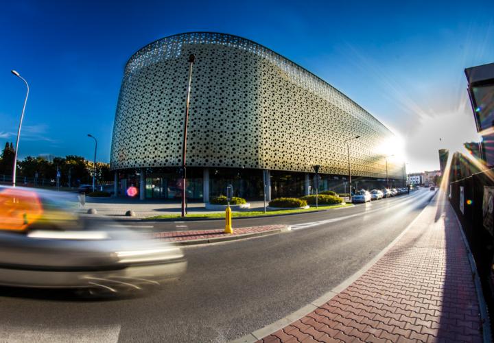 Corona Gallery Kielce